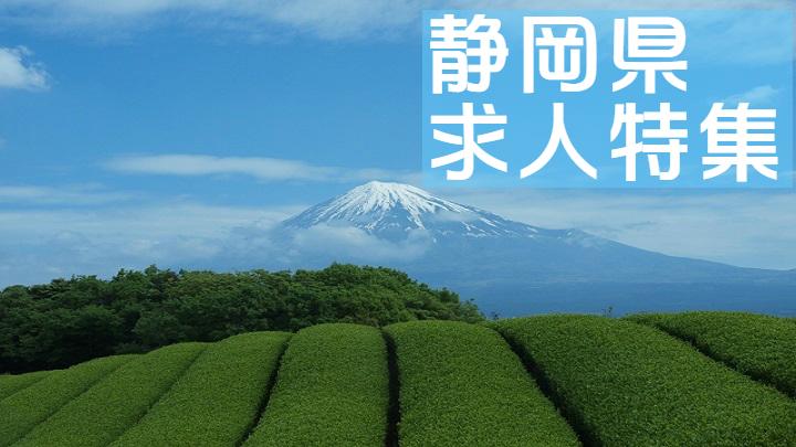 静岡県の求人特集~静岡市や未経験者歓迎、残業月30時間以内の求人など盛りだくさん~